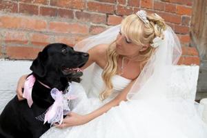 Почему люди женятся или самые глупые причины для свадьбы