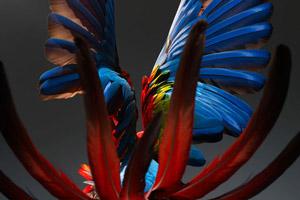 Психология творчества: процесс и результат