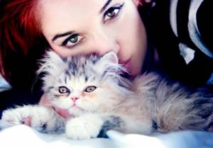 Тест на животное для девушек и женщин